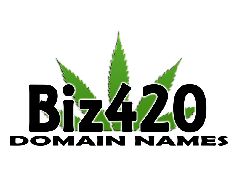 Biz420 Domain Names